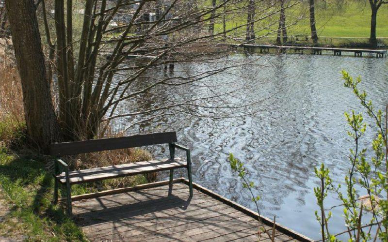 Direkt in unmittelbarer Nähe unserer gemütlichen Pension finden Sie am und um den Holzöstersee schöne Plätze zum Genießen und Entspannen.